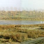 Spülfeld am ELK vor dem Vogelsang (1986)