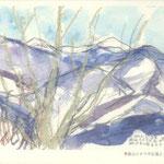 雪の丹沢主峰