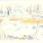 凍る池のくるみ