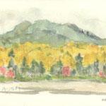 黄葉と雨池
