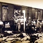 Motiv 13 - Über 50 % Tote nach Deportation