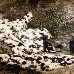 Motiv 16 - Erschießungskommando tötet Frauen