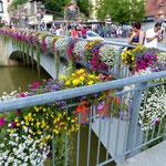 Motiv 18 - Neckarbrücke