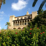 Motiv 3 - Kathedrale Palma La Seu