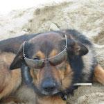 Timo mit Sonnenbrille!