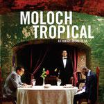 Moloch Tropical