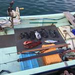Sea-wolf sub/predator  rollergun 105