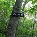 八の坂 2012.6.4