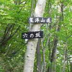 六の坂、望洋山道の看板も(石狩湾が望めるが、葉が茂ってよく見えない) 2012.6.4