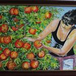 die Apfelpflueckerin (50x70) 300,00€