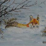 Fuchs im Schnee (24x18) 30,00€