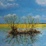 Oderwiesen im Frühjahr (50x70) 200,00€