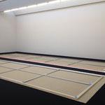 Bottrop, Josef Albers Museum, 2015 (W. Guyton)