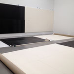 New York, Petzel Gallery, 2014 (W. Guyton)