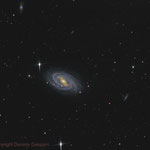 M109. Newton 25 cm f4.8, SBIG ST-10XME. Integration: 4.3 hours