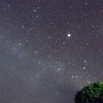 Sirio (a sinistra) e Canopo (a destra): le due stelle più brillanti del cielo