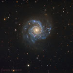M74. Newton 25 cm f4.8, SBIG ST-2000XCM. Integration: 6 hours