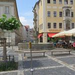 Zittau, Rathausplatz, Das kleine Gras, Baujahr 2014