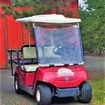 2018 Attractie- en Vakantiepark Slagharen, Golfkarretje.
