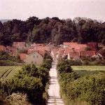 Blick vom Weinberg über die Alte Halberstädter Straße nach Börnecke