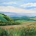Daniela Neufeld - Rhön-Landschaft I 40 x 50 cm