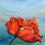 Daniela Neufeld - Mohnblume 40 x 50 cm