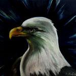 Daniela Neufeld - Stolz des Adlers                                                               60 x 80 cm