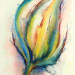 Daniela Neufeld - Regenbogenblüte 50 x 30 cm