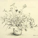 Daniela Neufeld - Tuschezeichnung - Wiesenblumen 40 x 50 cm