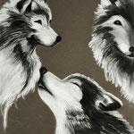 Daniela Neufeld - Wolfs-Impressionen                                                         80 x 60 cm