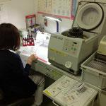 血液型や輸血の適合検査を行います。