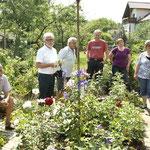 im Rosengarten von Herrn Frauenknecht