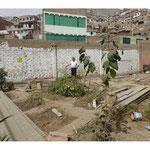 Día 27 abril – Avances en la instalación del biohuerto.