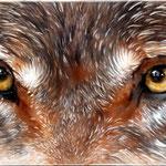 Wolf auf Leinwand