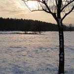 Sonnenspiegelung im Schnee