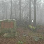 Fliegerdenkmal 1944 stürzte eine Ju 88 im Winter hier ab