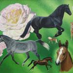 Pferde und Rosen