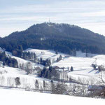 Bachtel im Winter