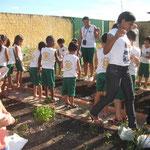 Die Kindergartenkinder lernen den Anbau von Gemüse
