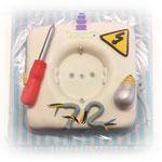 Elektriker Torte  89 Euro