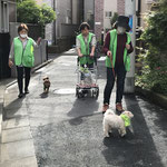 4月_わんわんパトロール_006