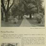 images of campus - winding path to town and executive mansion