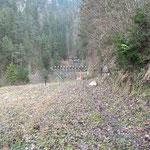 17 Ziele auf 3 Lanes für das Training aus dem Schützenhaus...