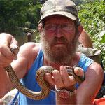 Capture d'un bébé anaconda