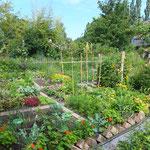 naturnaher Garten, H.Willmes