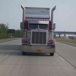 Bernadette hat Ihre Vorliebe für pinke Trucks entdeckt...