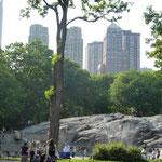 Der Central Park...