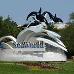 Yeee, endlich geht`s los..... Ab zu Seaworld......