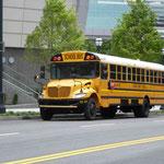 Diese Schulbusse sind auch überall....