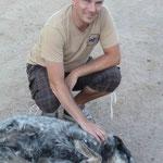 und natürlich begrüsst uns auch Jake, der Hofhund...